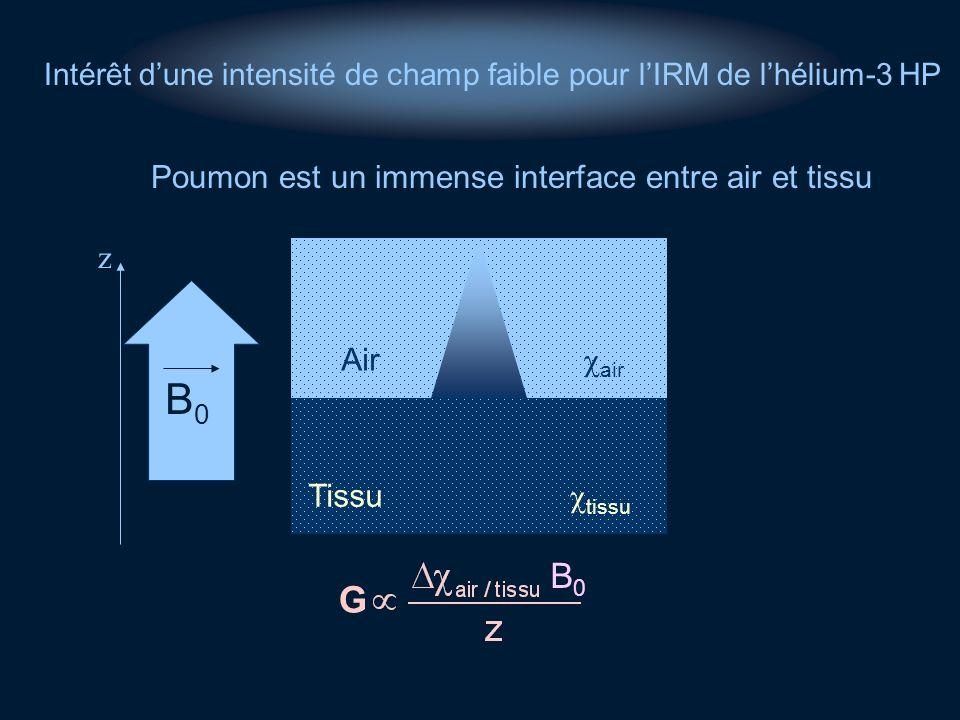 Poumon est un immense interface entre air et tissu
