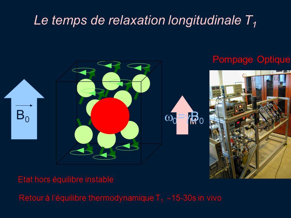 Le temps de relaxation longitudinale T1