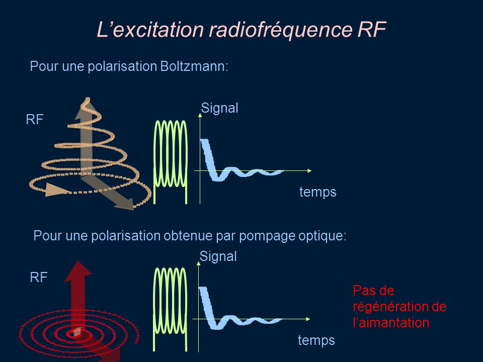 L'excitation radiofréquence RF