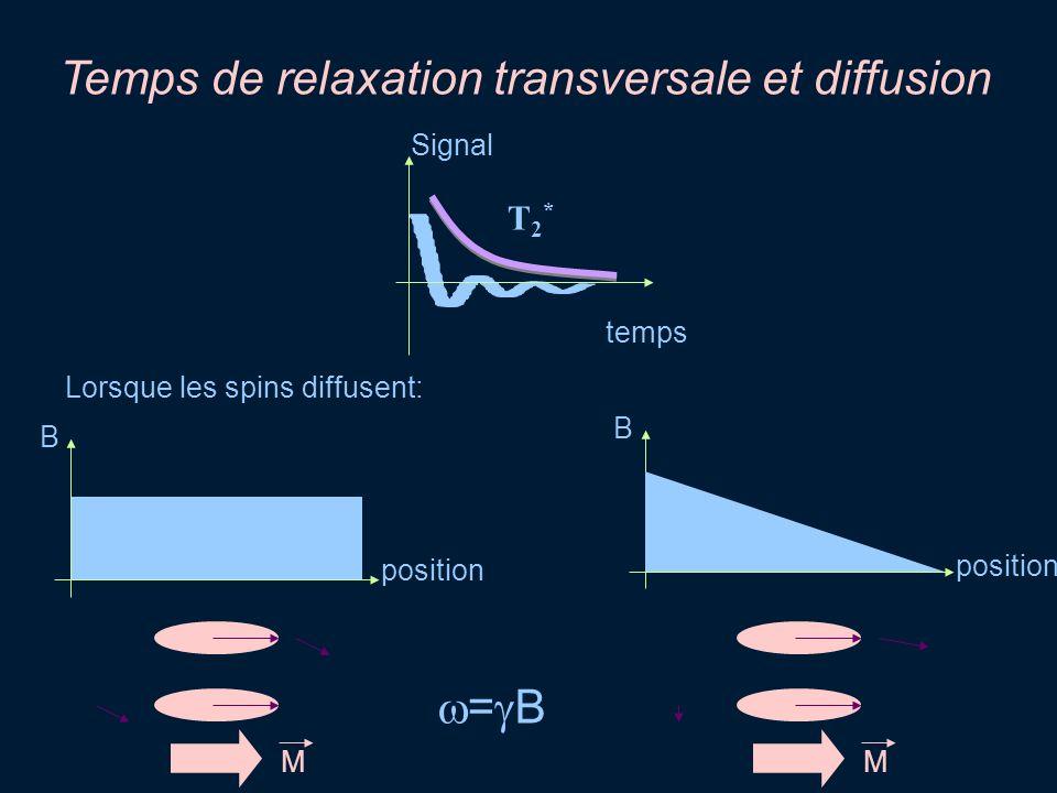 Temps de relaxation transversale et diffusion