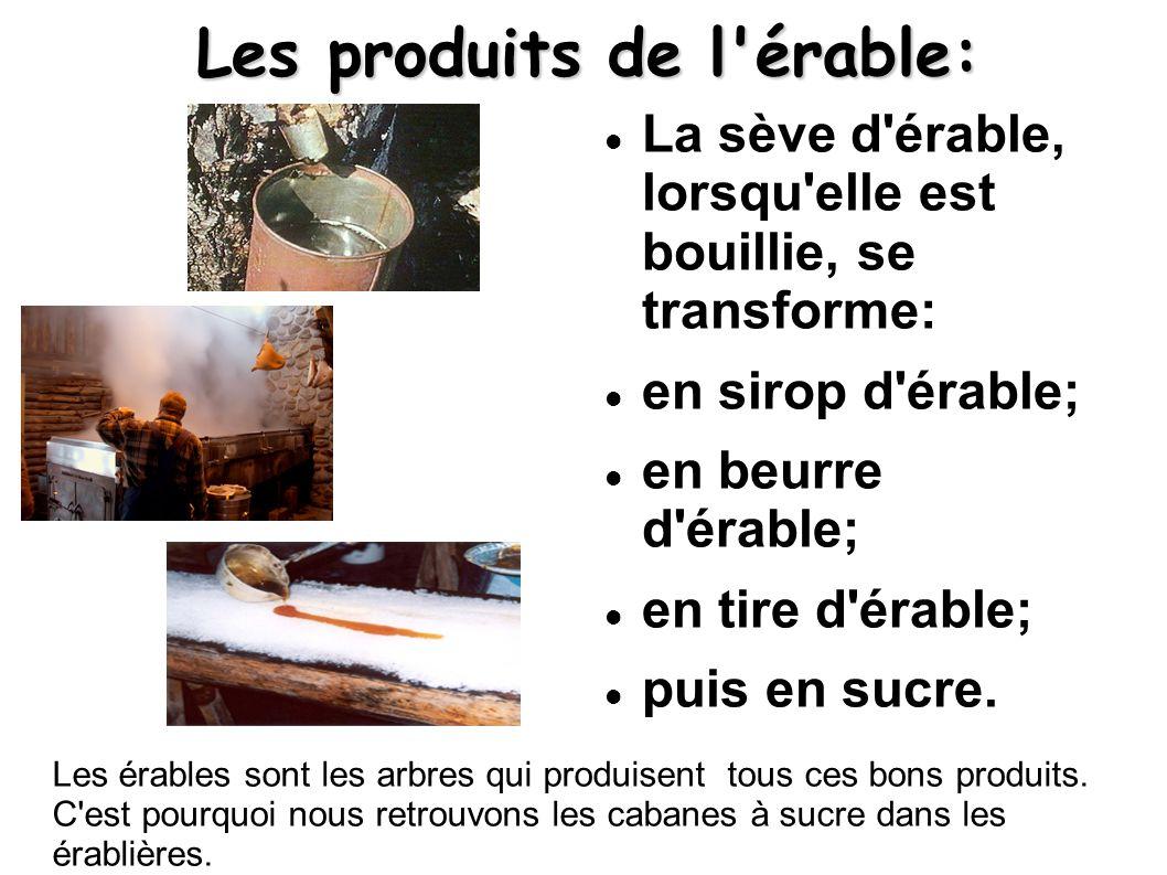 Les produits de l érable: