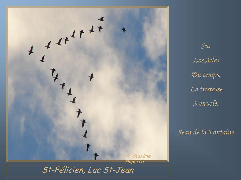 St-Félicien, Lac St-Jean