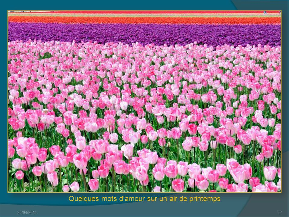 Quelques mots d'amour sur un air de printemps