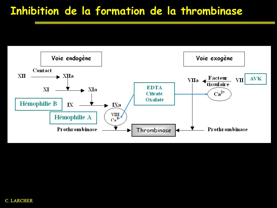 Inhibition de la formation de la thrombinase