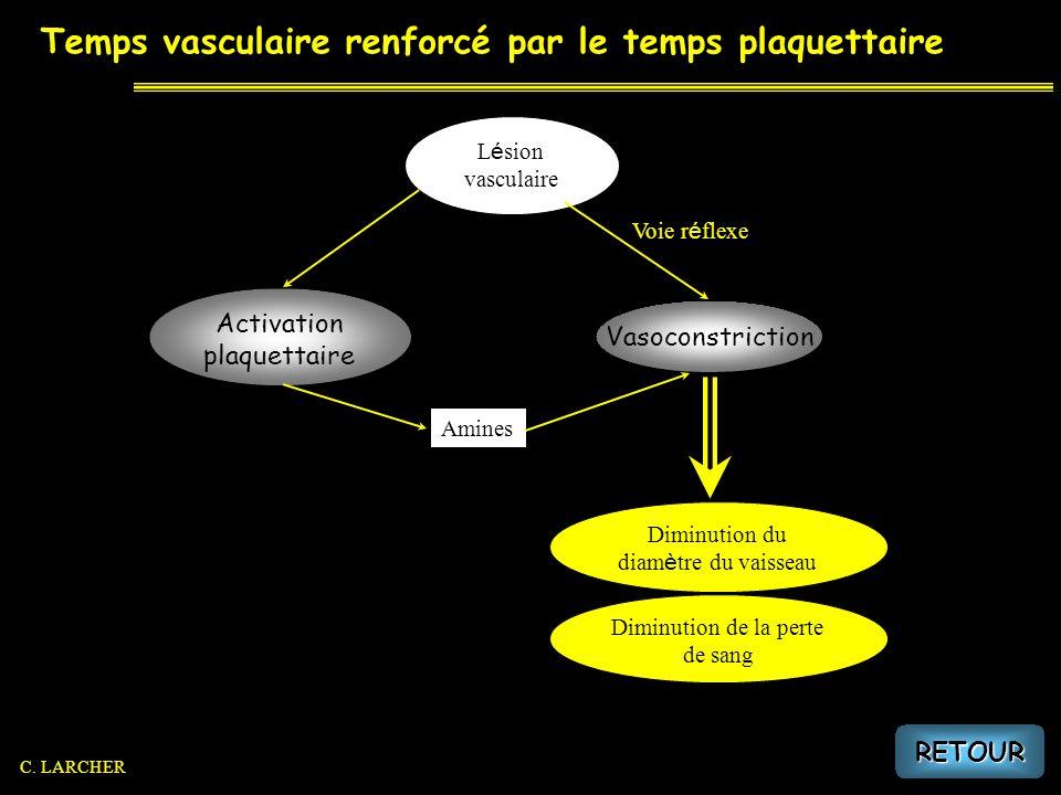 Temps vasculaire renforcé par le temps plaquettaire