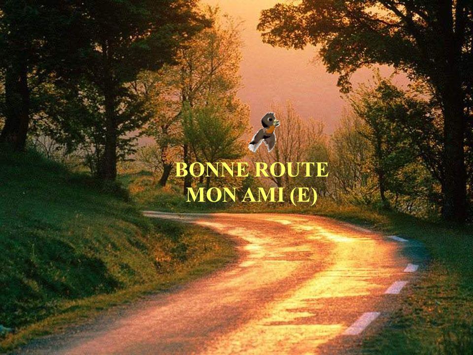BONNE ROUTE MON AMI (E)