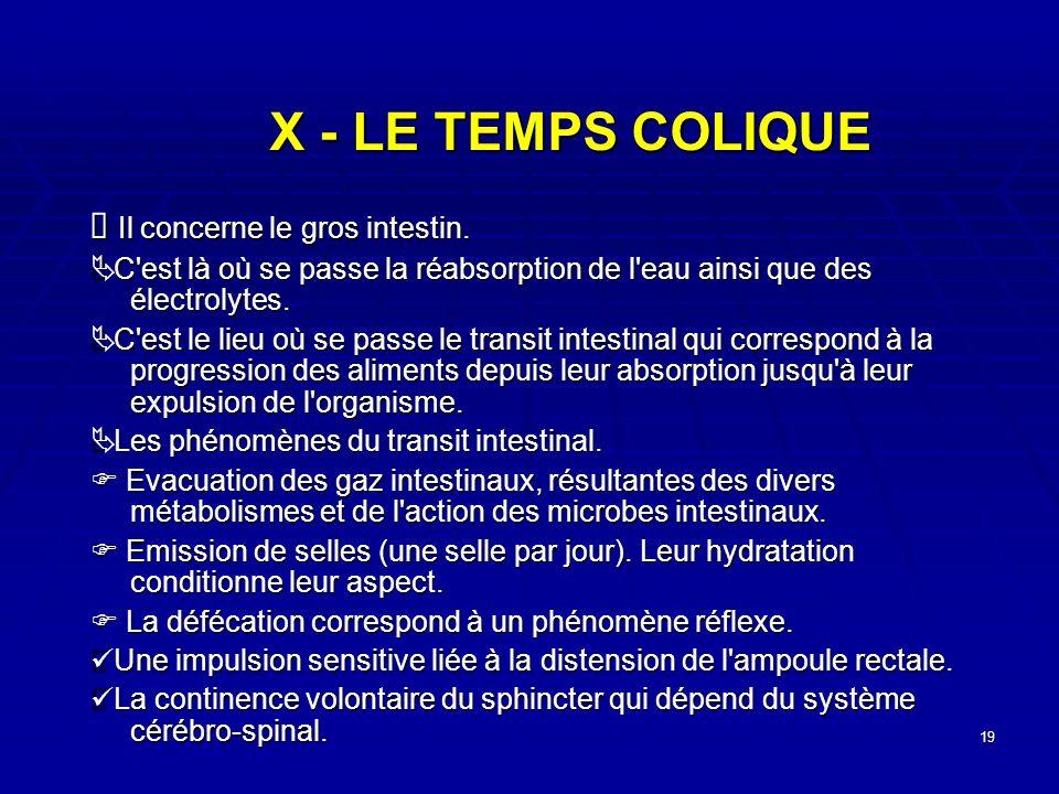 X - LE TEMPS COLIQUE Ä Il concerne le gros intestin.
