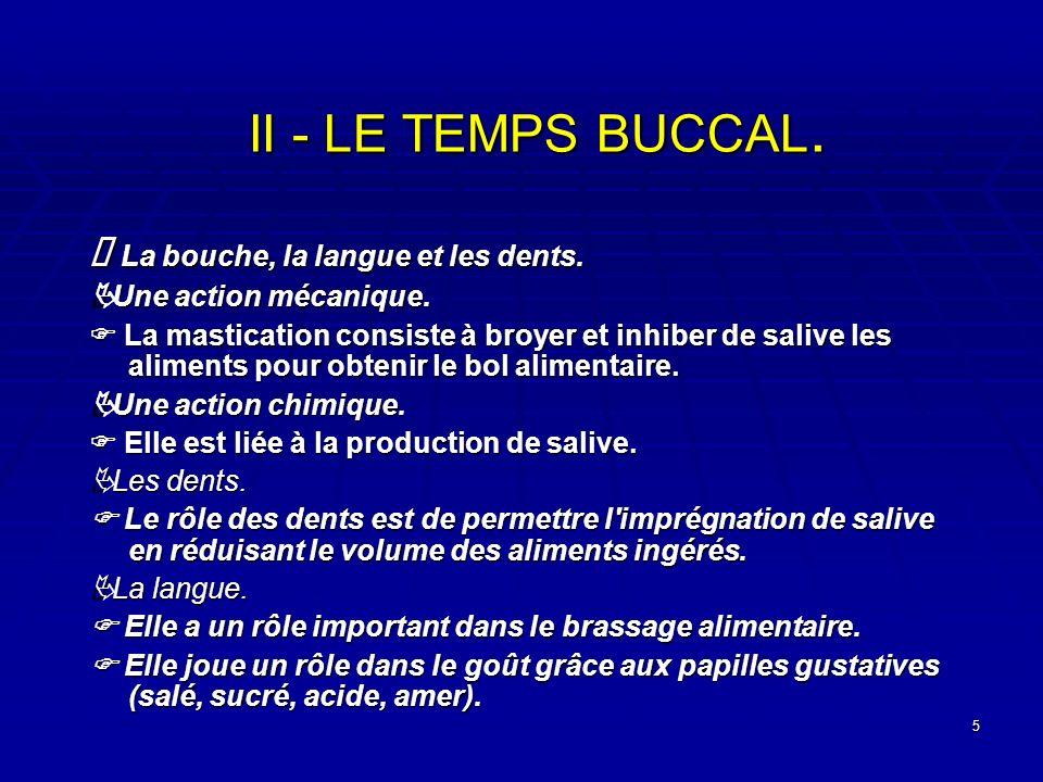 II - LE TEMPS BUCCAL. Ä La bouche, la langue et les dents.