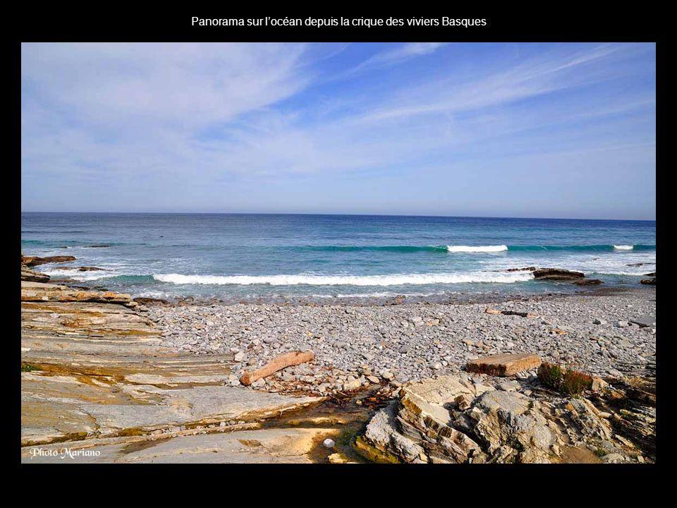 Panorama sur l'océan depuis la crique des viviers Basques
