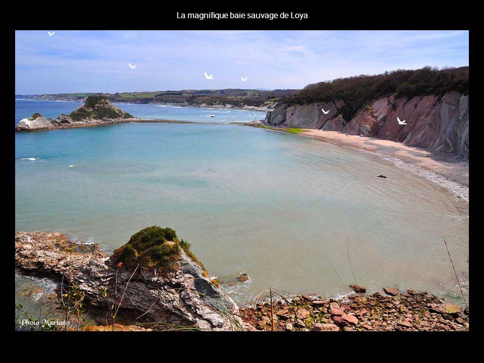 La magnifique baie sauvage de Loya