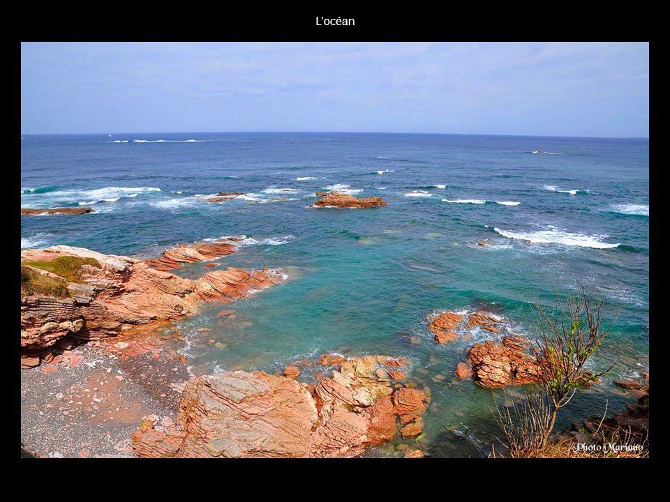 L'océan . .