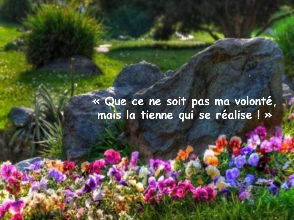 « Que ce ne soit pas ma volonté, mais la tienne qui se réalise ! »