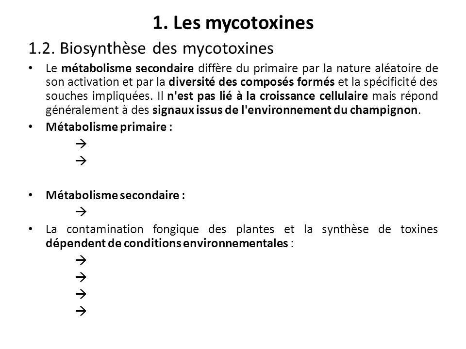 1. Les mycotoxines 1.2. Biosynthèse des mycotoxines
