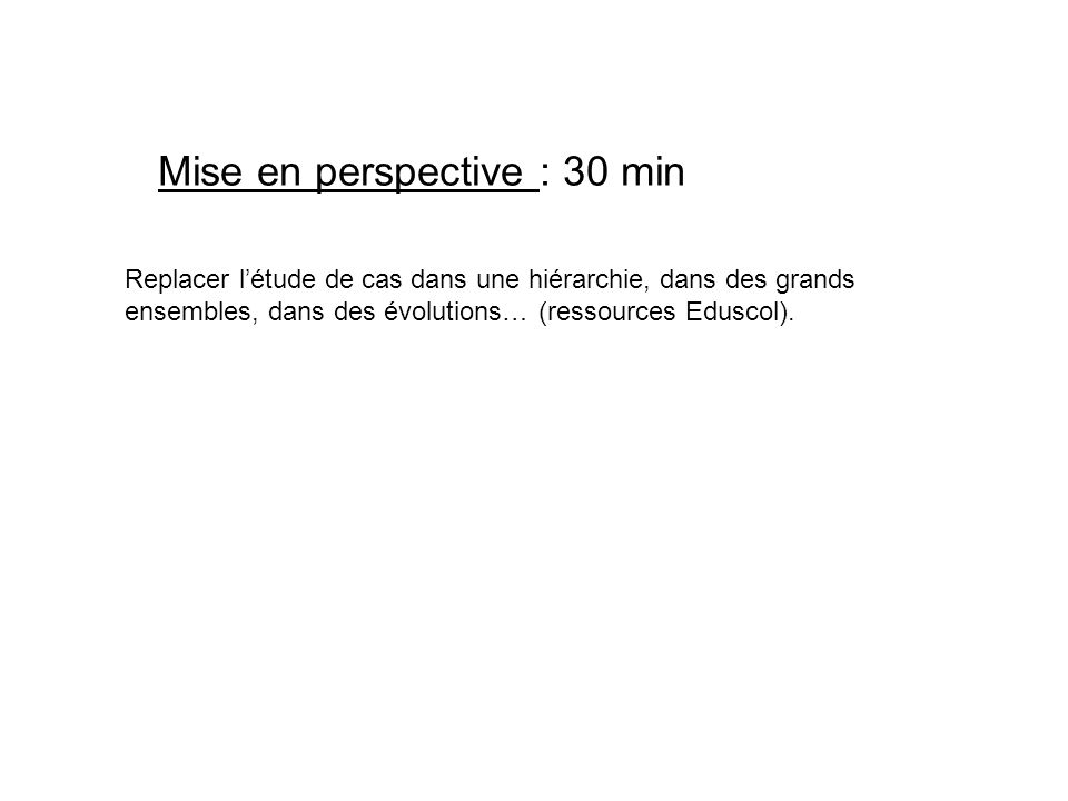 Mise en perspective : 30 min