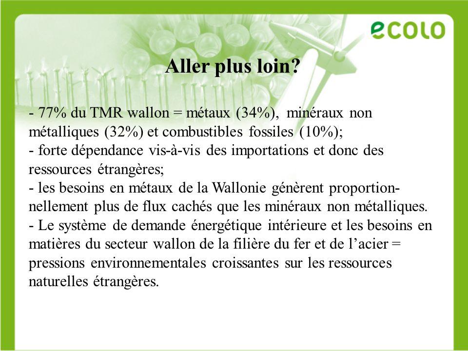 Aller plus loin 77% du TMR wallon = métaux (34%), minéraux non métalliques (32%) et combustibles fossiles (10%);