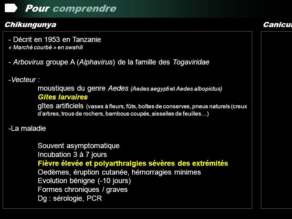 Pour comprendre Chikungunya Canicule Décrit en 1953 en Tanzanie