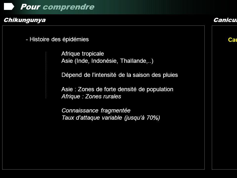 Pour comprendre Chikungunya Canicule Histoire des épidémies