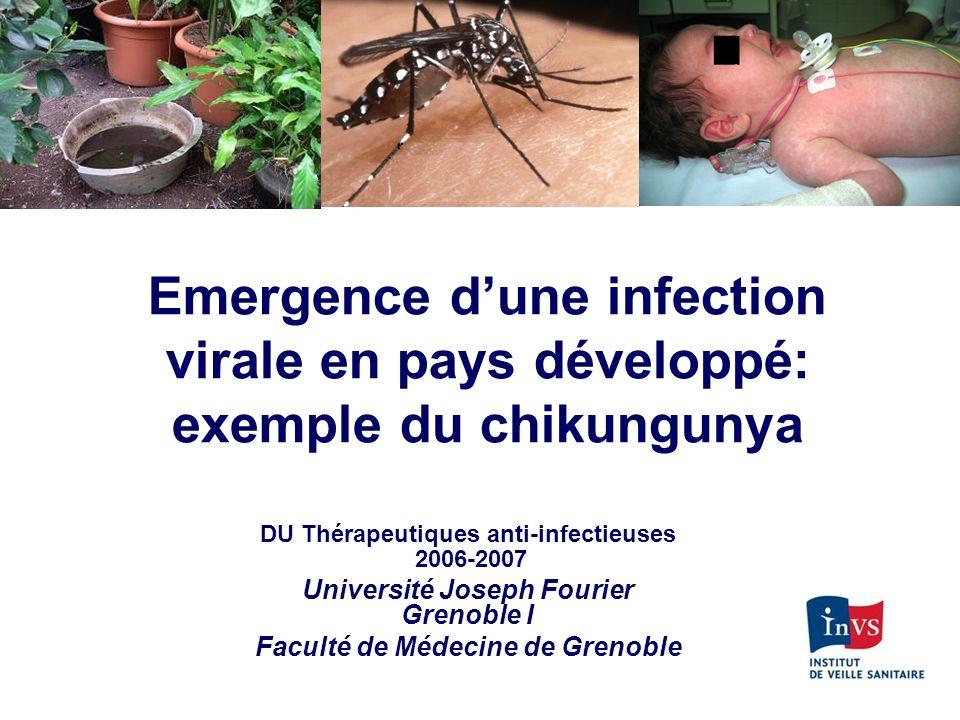 Emergence d'une infection virale en pays développé: exemple du chikungunya