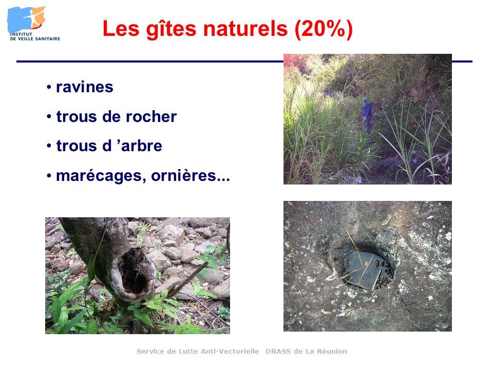 Les gîtes naturels (20%) ravines trous de rocher trous d 'arbre