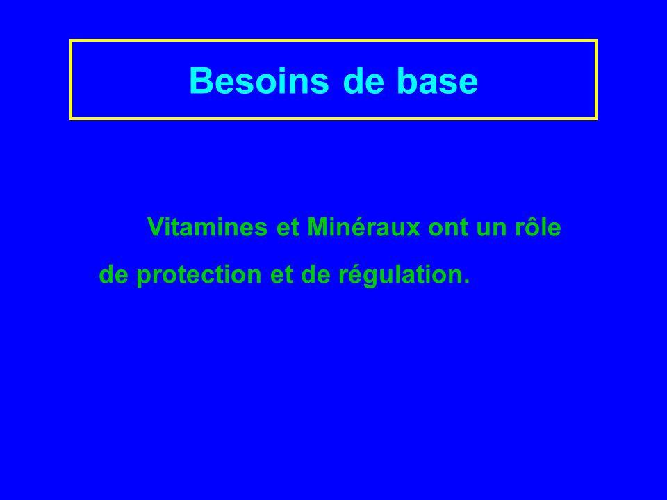 Besoins de base Vitamines et Minéraux ont un rôle de protection et de régulation.