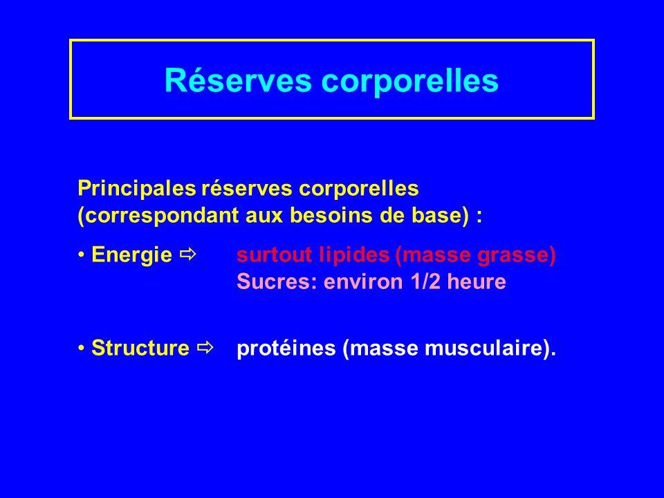 Réserves corporelles Principales réserves corporelles