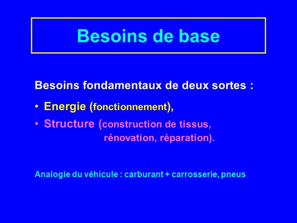 Besoins de base Besoins fondamentaux de deux sortes :