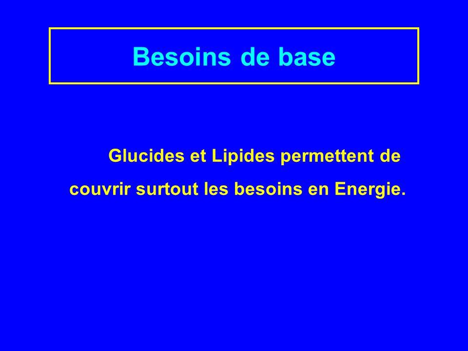 Besoins de base Glucides et Lipides permettent de couvrir surtout les besoins en Energie.