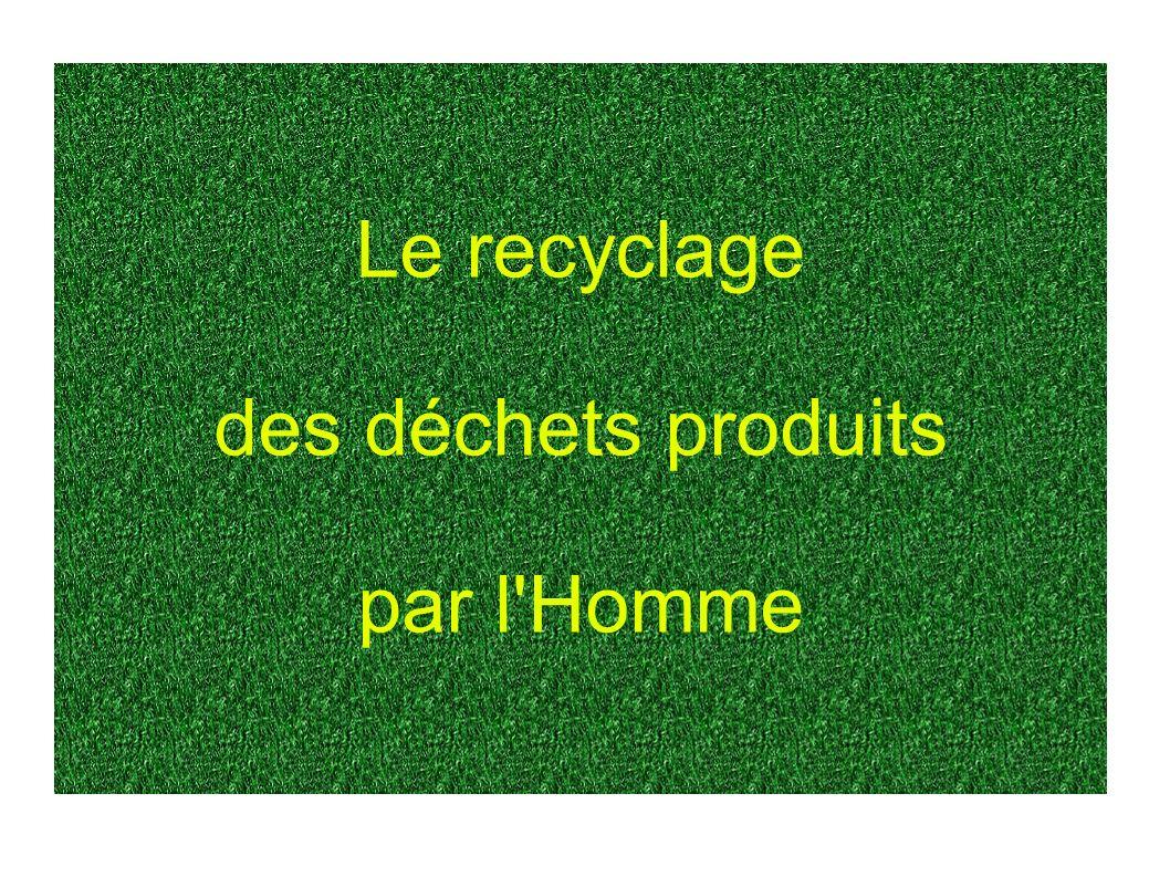 Le recyclage des déchets produits par l Homme