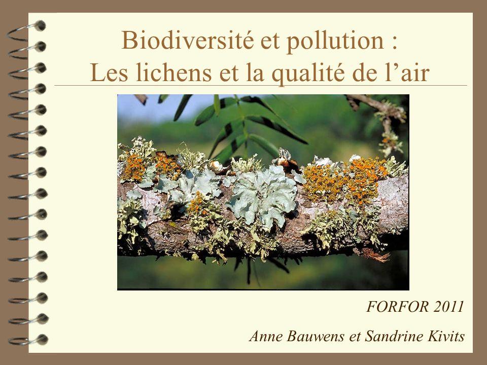 Biodiversité et pollution : Les lichens et la qualité de l'air