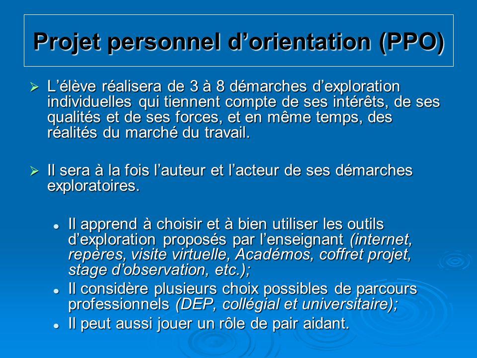 Projet personnel d'orientation (PPO)
