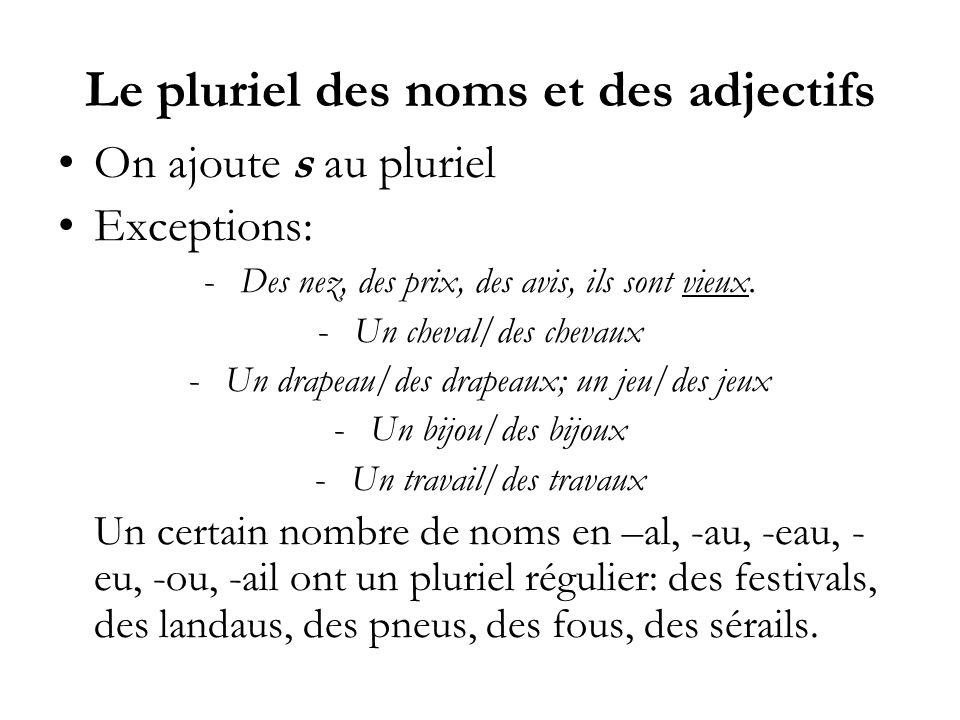 Le pluriel des noms et des adjectifs