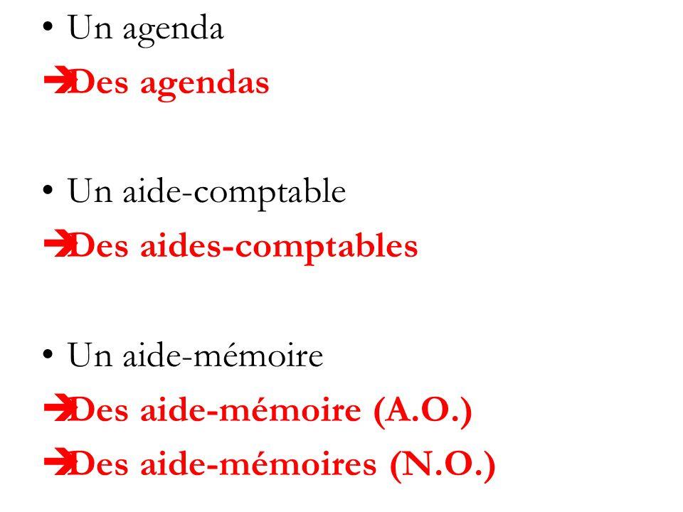 Un agenda Des agendas. Un aide-comptable. Des aides-comptables. Un aide-mémoire. Des aide-mémoire (A.O.)