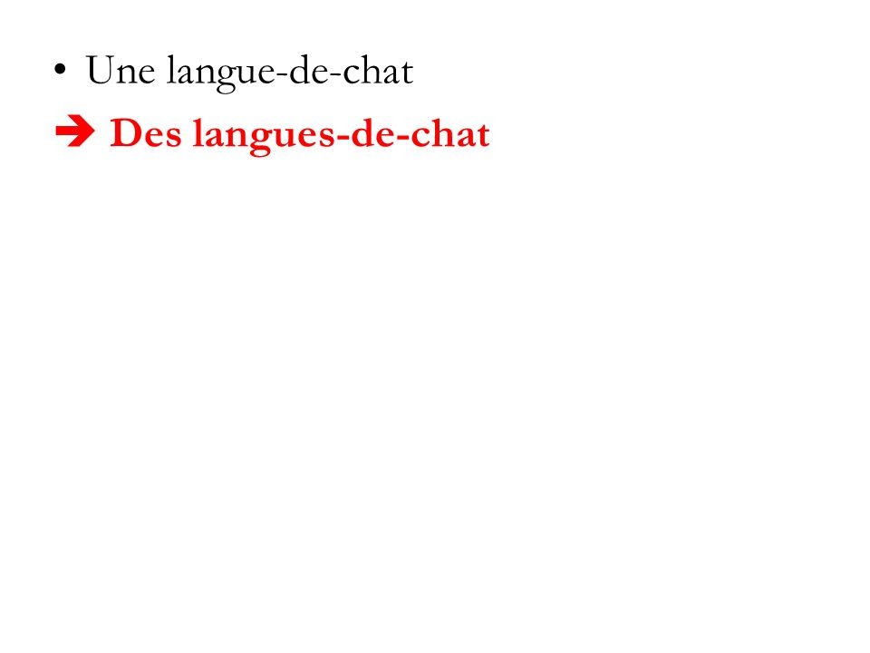 Une langue-de-chat  Des langues-de-chat