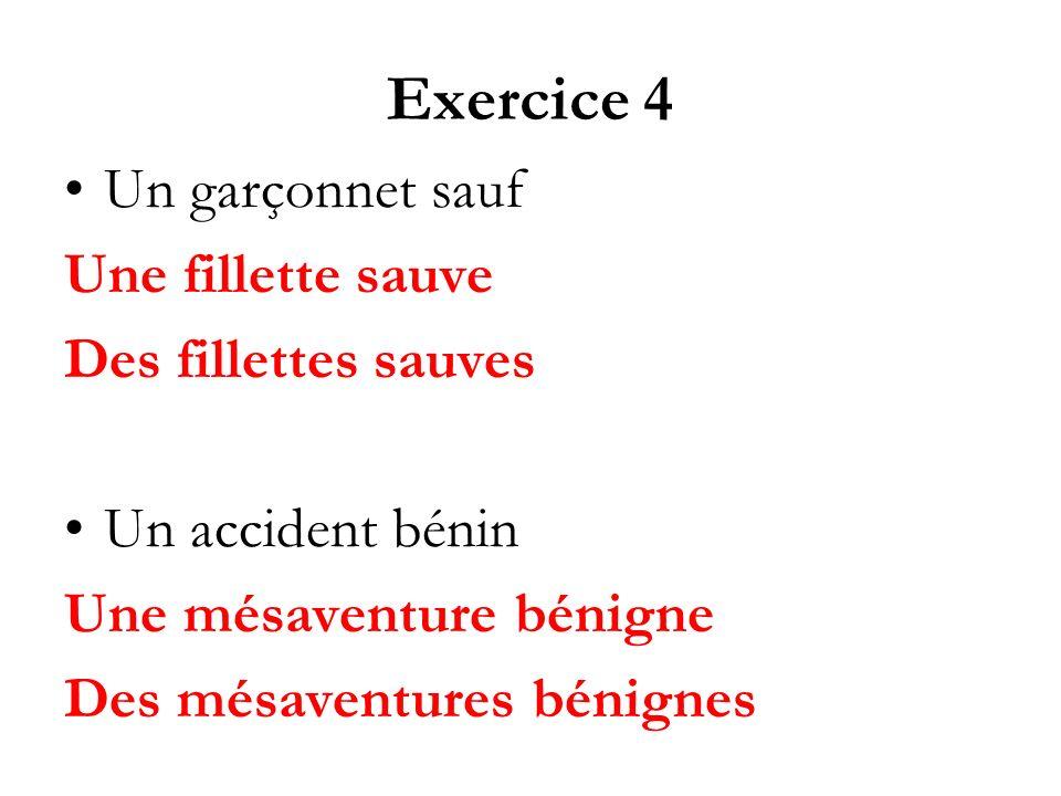 Exercice 4 Un garçonnet sauf Une fillette sauve Des fillettes sauves