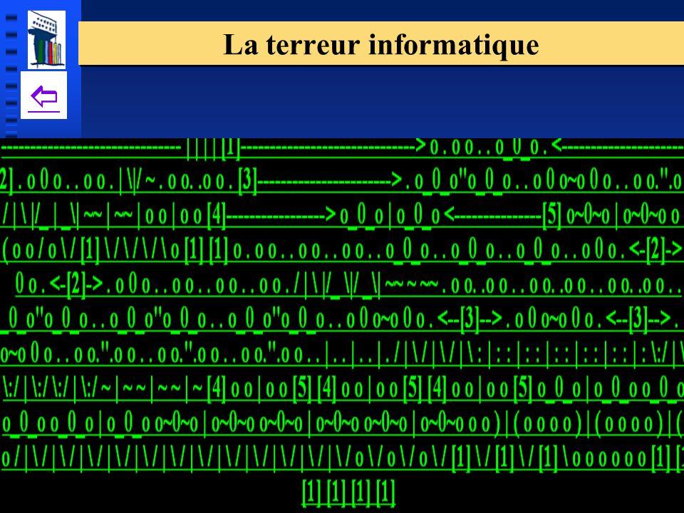 La terreur informatique
