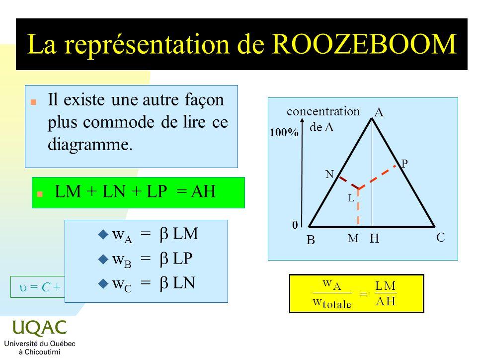 La représentation de ROOZEBOOM