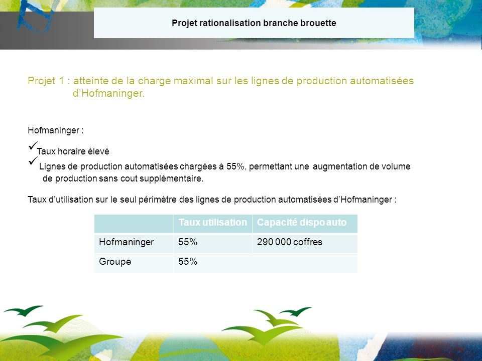 Projet rationalisation branche brouette