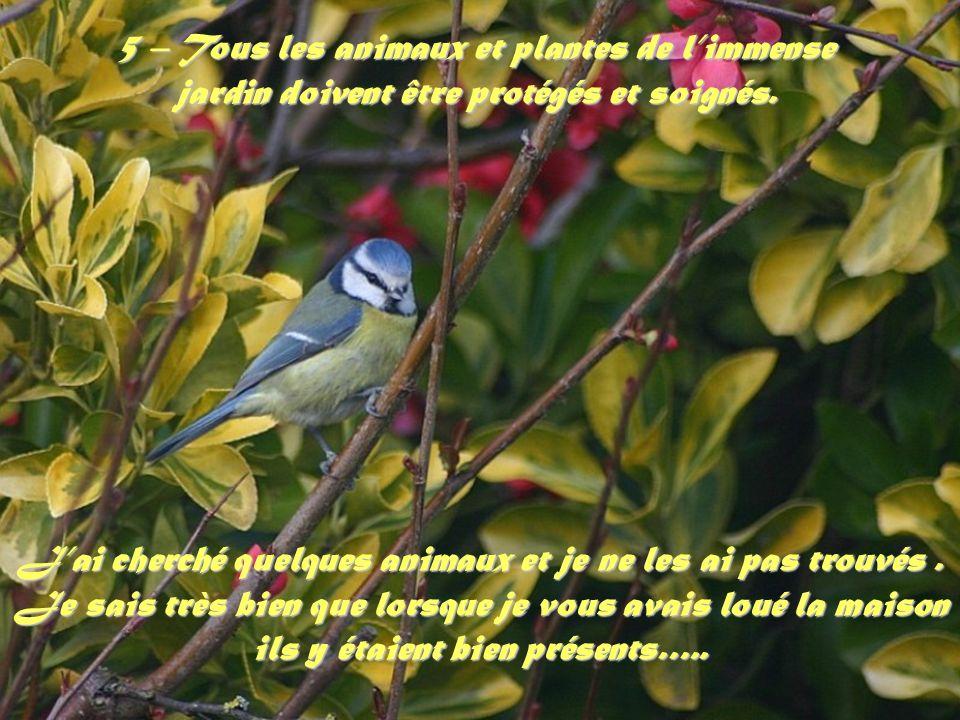 5 – Tous les animaux et plantes de l'immense jardin doivent être protégés et soignés.
