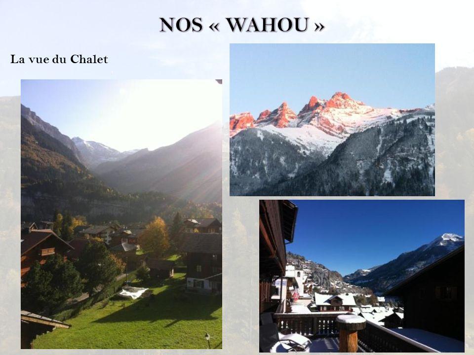 NOS « WAHOU » La vue du Chalet