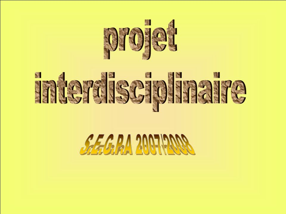projet interdisciplinaire S.E.G.P.A 2007/2008