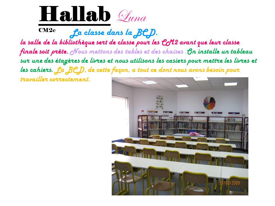 Hallab Luna La classe dans la BCD.