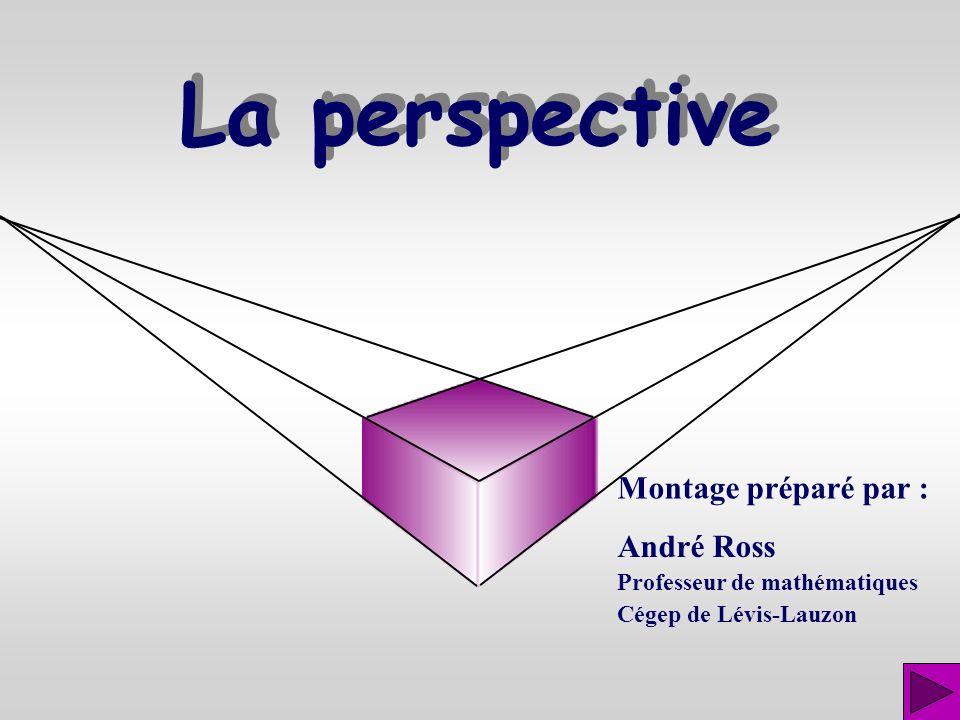 La perspective Montage préparé par : André Ross