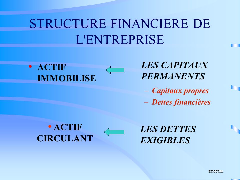 STRUCTURE FINANCIERE DE L ENTREPRISE