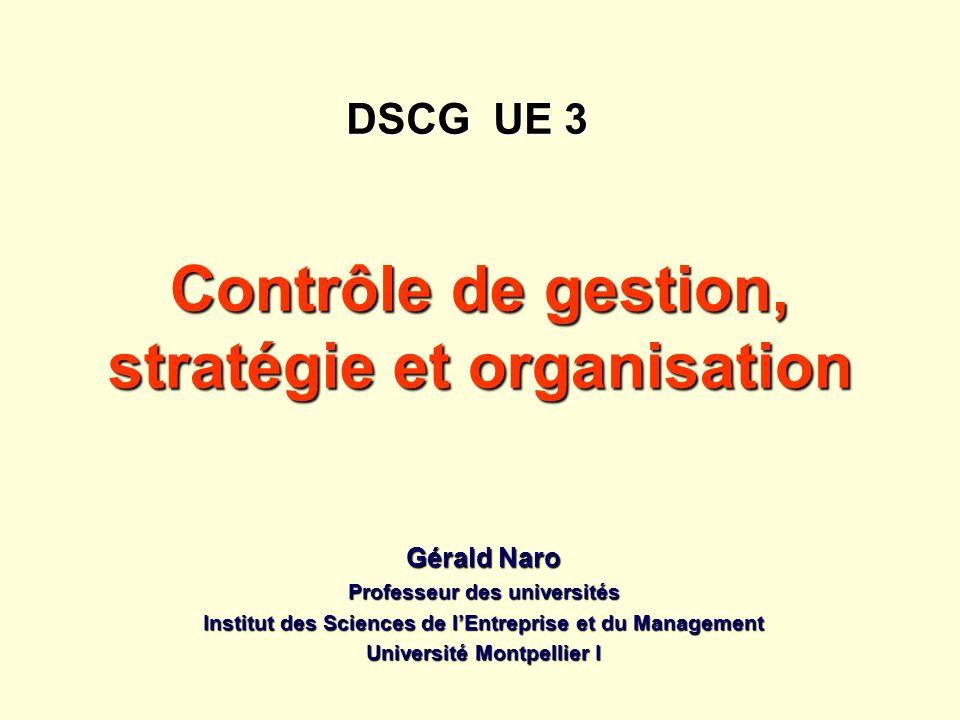 Contrôle de gestion, stratégie et organisation