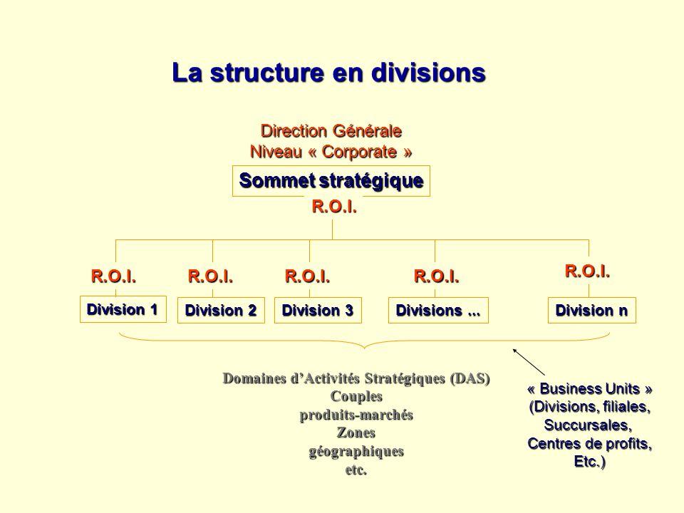 Domaines d'Activités Stratégiques (DAS)