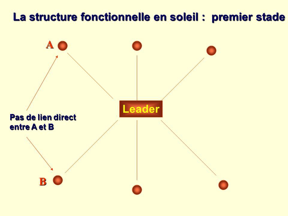 La structure fonctionnelle en soleil : premier stade
