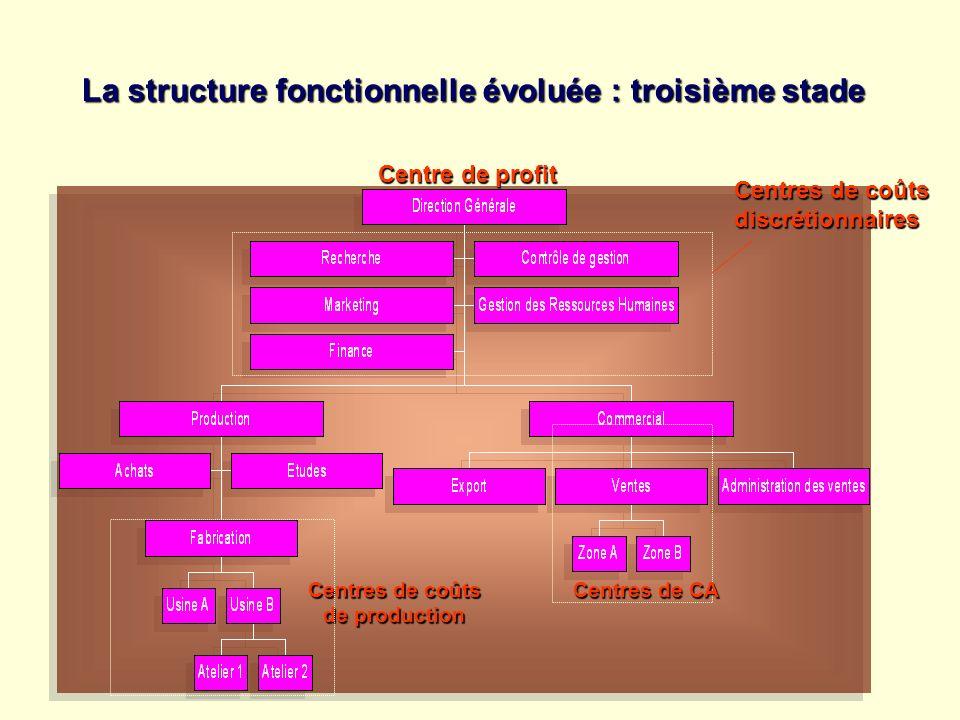 La structure fonctionnelle évoluée : troisième stade