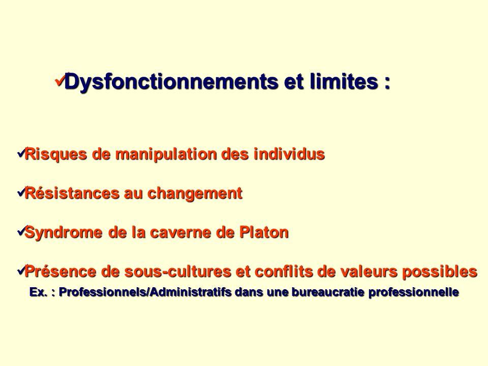 Dysfonctionnements et limites :