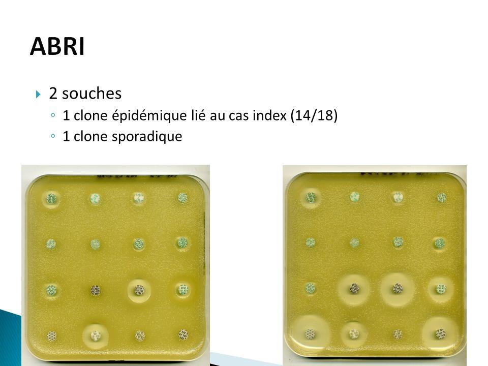 ABRI 2 souches 1 clone épidémique lié au cas index (14/18)