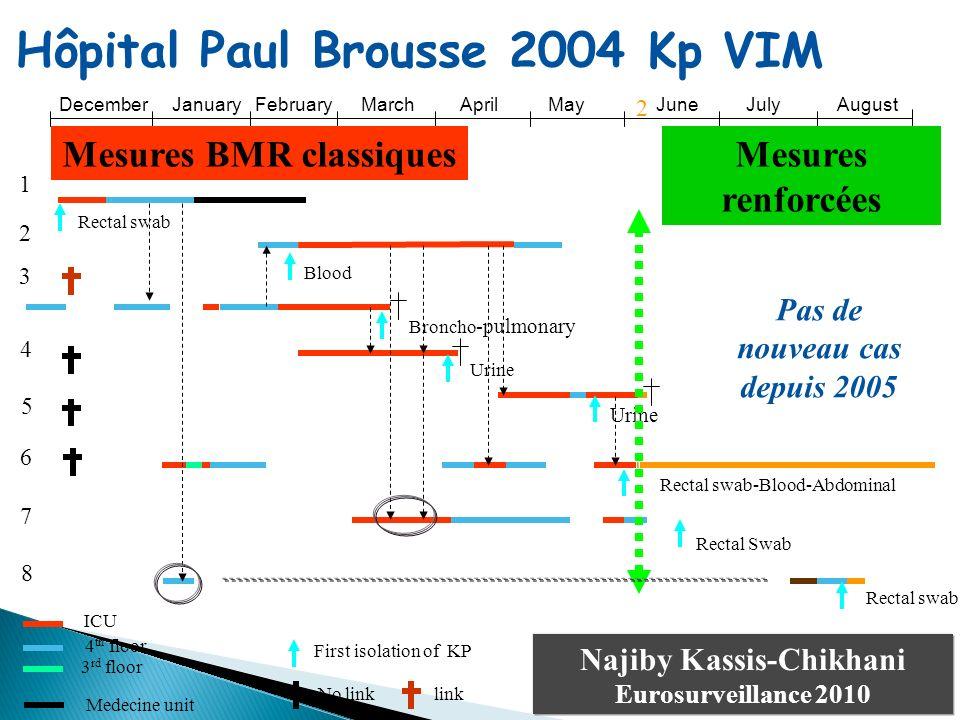 Hôpital Paul Brousse 2004 Kp VIM